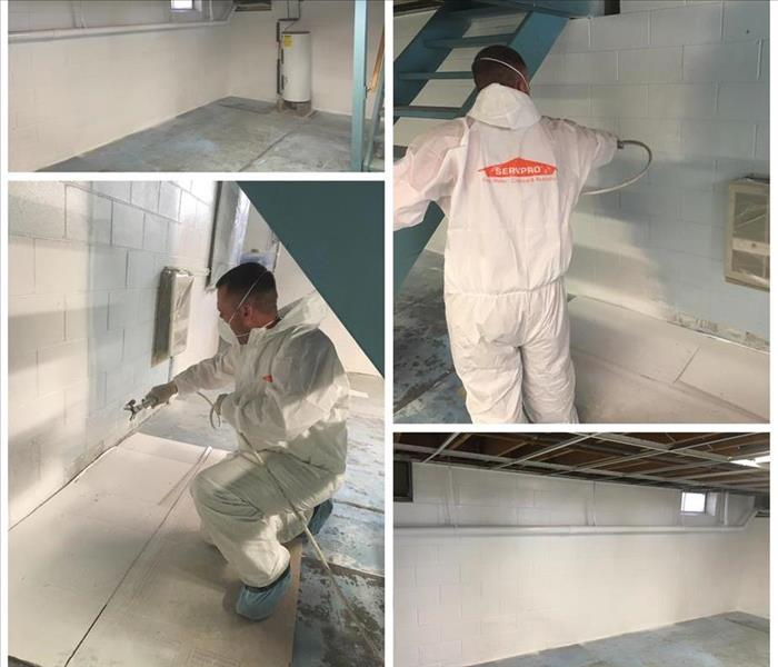 Basement/Mold Cleaning - Phelps, NY