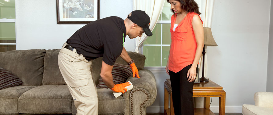 Victor, NY carpet upholstery cleaning